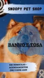 BANHO E TOSA EM DOMICÍLIO