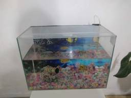 Aquario 40 litros