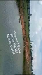 Fazenda na BR174 Km 153 1.000ha - MISTA Peixe e Gado