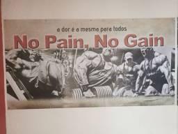Painel de Musculação