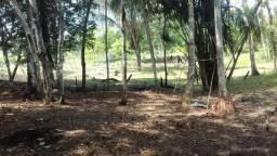 Sitio Manacapuru próximo ao Miriti troco é pago a diferença