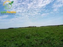 Título do anúncio: FAZENDA À VENDA EM MIRANDA - DE 3.200 HECTARES (Pecuária)