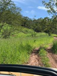 135 Alq. Pronta + Beira Rio! 40 km Pires do Rio.