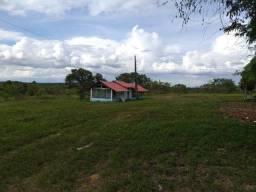 Fazenda com 1500 hectares em Amaraji / RR, ler descrição do anuncio