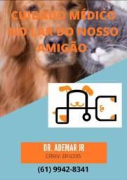 Atendimento veterinário em domicílio
