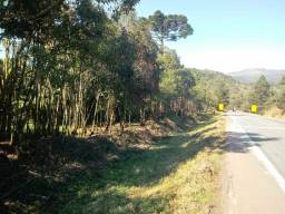 Vendo área em Tijucas do sul com 14 mil M2 com nascente