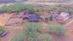 Fazenda à Venda na Bahia - Fazenda de Pecuária c/ 326 Hectares em Várzea do Poço - Bahia