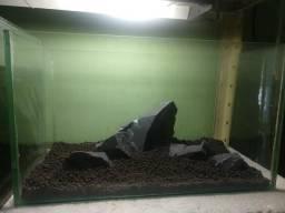 Aquário com filtro, substrato ,rochas e plantas