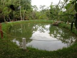 Chácara 5000 m² rica em água - Caldas Novas (GO)