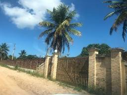 Oportunidade - Granja em Monte Alegre - RN