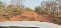 1.100 Alq. p/ Soja (Safra e Safrinha). Sul do Pará