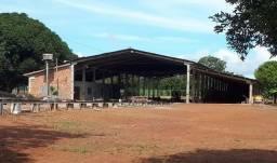 Galpão Industrial - Gurupi