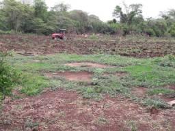 Área 300 hectares para arrendar para Soja