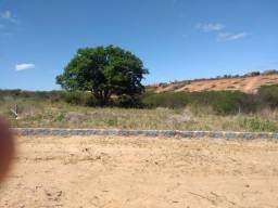Terreno situado em Princesa Isabel