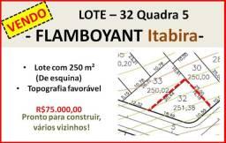 Lote 32 Quadra 5 - Flamboyant
