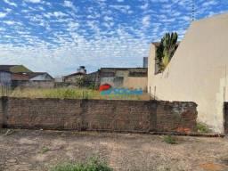 Terreno à venda, 300 m² por R$ 150.000,00 - Rio Madeira - Porto Velho/RO