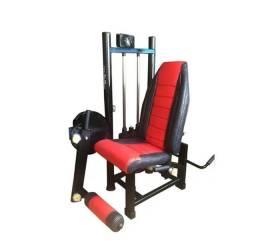 Cadeira Extensora/flexora - Para Casa & Academia