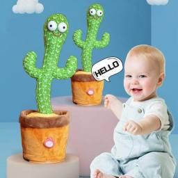 Cactus dançarino