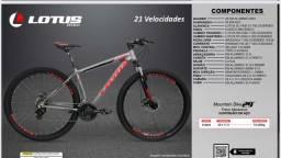 Bicicleta ar 29