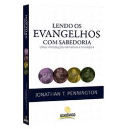 Livro Lendo os Evangelhos com Sabedoria