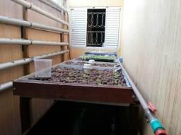 Tanque para aquaponia