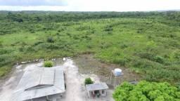 Area para compensação 350 alqueires (4,84 hectare) alqueire terra nua