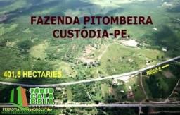 Fazenda Pitombeiras em Custódia 400 hectares - Fazenda a Venda no bairro Comunid...