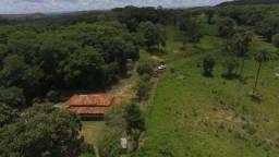 Linda fazendinha de 5,6 hectares as margens do Rio * WhtsAPP Guilherme