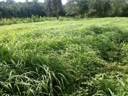 Fazenda no Mato Grosso em Rosário Oeste