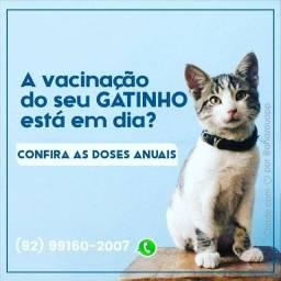 Especialista em atendimento veterinário à domicílio