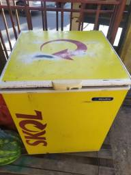 Freezer 170 litros