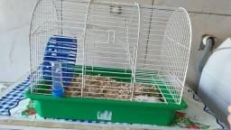 GAIOLA COMPLETA com o ratinho