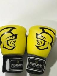 Luvas de boxe pretorian número 14