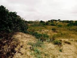 Ótimo Terreno em Pinhal Sul