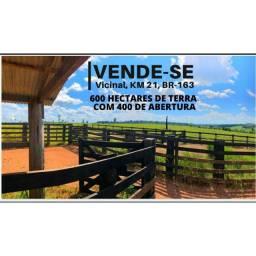 Vendo Fazenda na Região de Itaituba-PA.