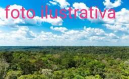 Fazenda de 1500 hectares em Mucajaí / RR, ler a descrição do anuncio