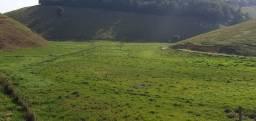 Fazenda 20alquires 100% pasto,40%várzea,rica água,próx.BR 101-Mimoso ES
