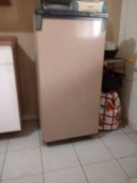 Freezer 230 consul