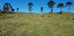 Título do anúncio: Área Rural em Urubici