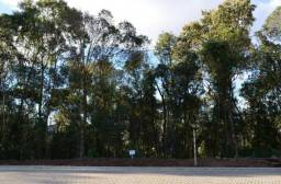 Terreno à venda, 613 m² por R$ 262.150,00 - Prinstrop - Gramado/RS