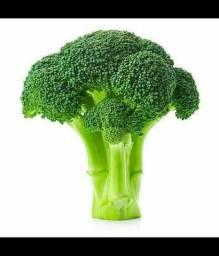 Procuro empresas compradores de brócolis