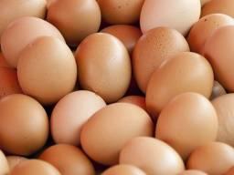 Ovos Caipira - Legítimos!