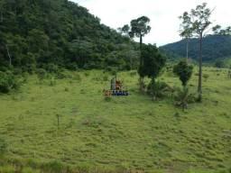 Fazenda à venda, por R$ 19.950.000 - Alta Floresta D'Oeste/RO