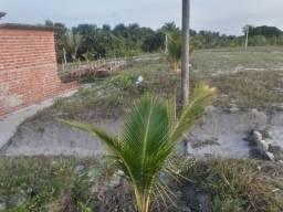 Terreno para vender no Maranhão