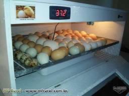 Aluguel na incubadora