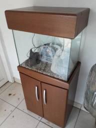 Aquário com móvel 72 litros + acessórios