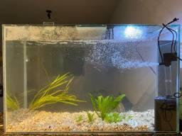 Aquário 120 litros com bomba e forração do fundo do aquário