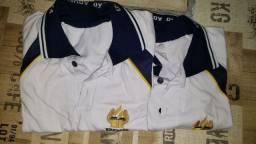 Duas Camisas Polo Colégio Adventista tamanho MA