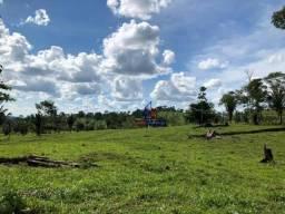 Sítio localizado na linha 205 da cidade de ji-paraná Rondônia