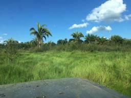 Fazenda em MT,perto de Barra dos Bugres com 900 Alqueires Paulista